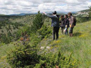 observation sur terrain